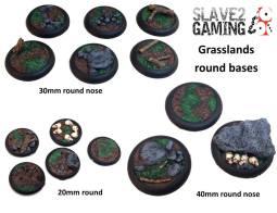 S2G-Bases_01